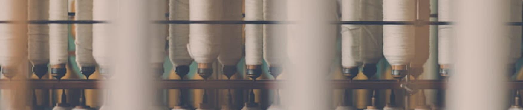 Coton biologique : tout ce qu'il faut savoir